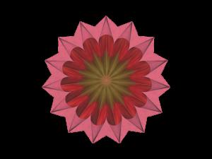 Render-Pink Dahlia