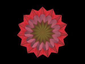Render-Pink Dahlia2